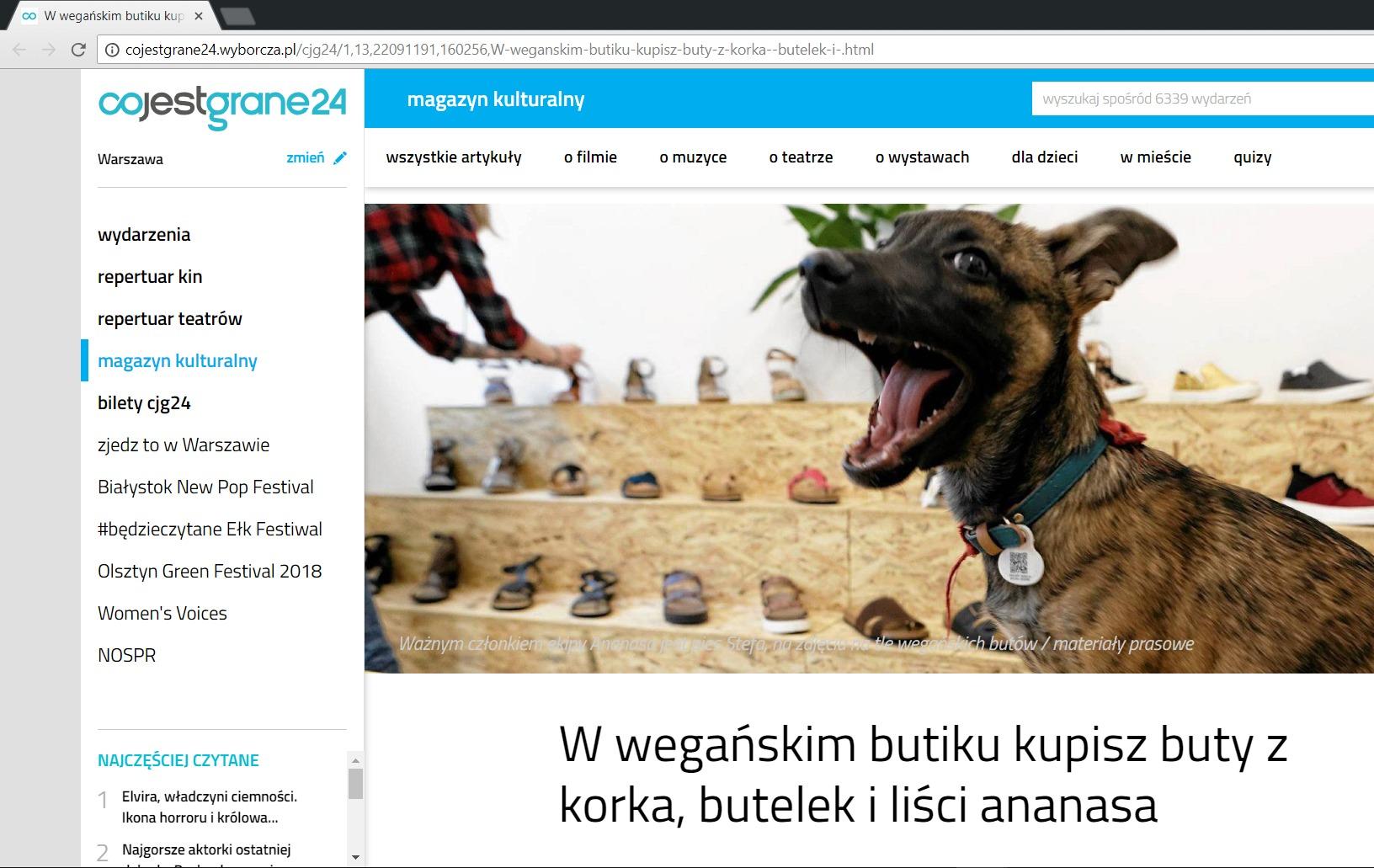 cojestgrane24.wyborcza.pl o ananaswarsaw.pl