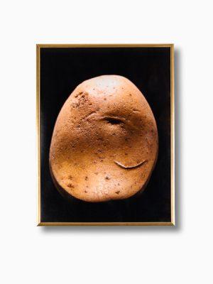 fotografia ziemniaka